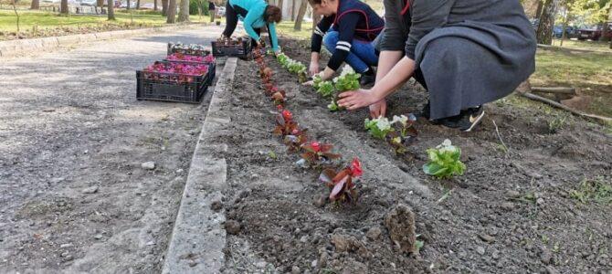 Улепшавање школског дворишта, парка и школске економије.